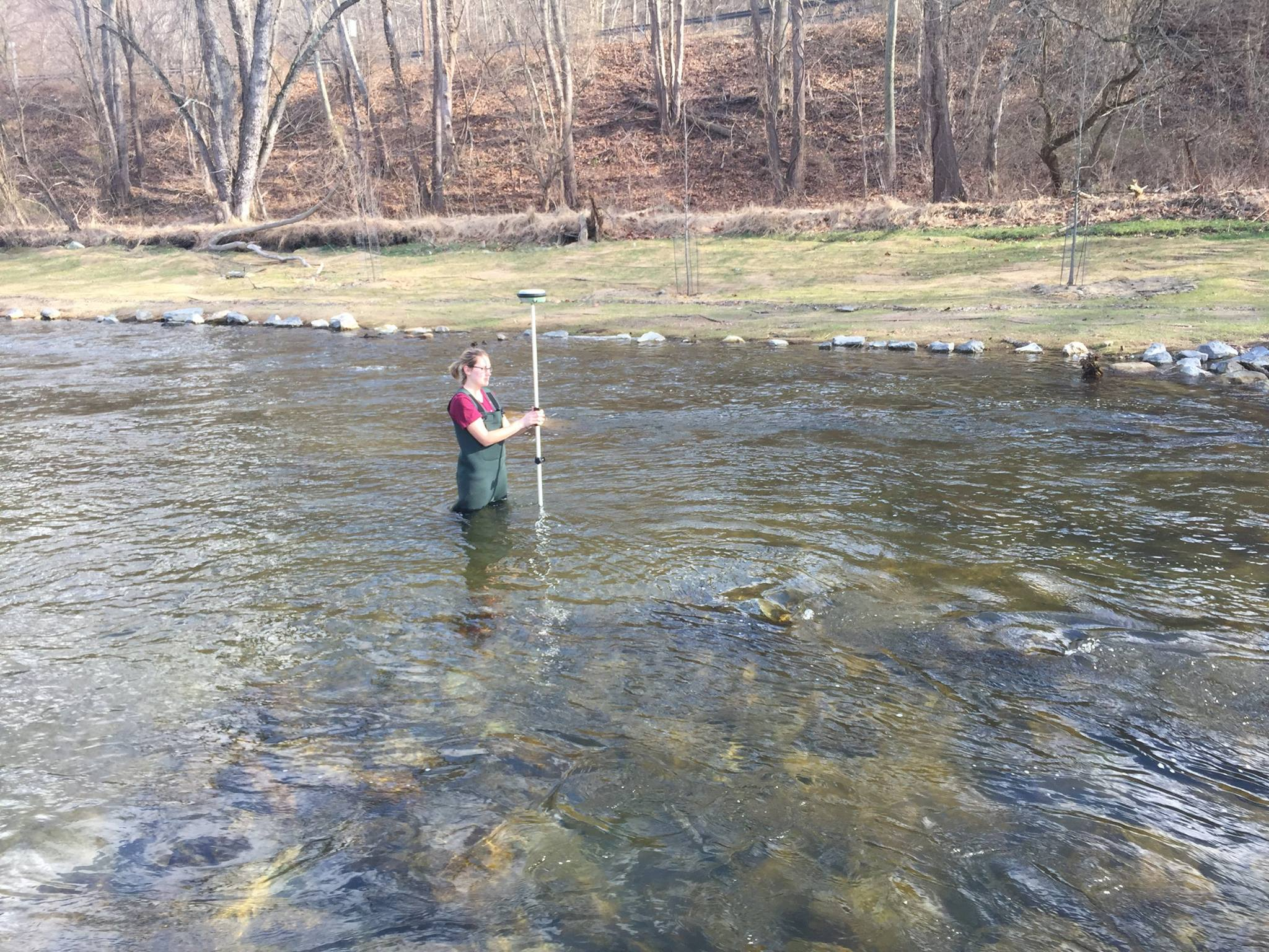 In this photo, Princeton Hydro team member gathers data on the Hughesville Dam removal, using GPS to check the elevation of the constructed riffle on the beautiful Musconetcong River.