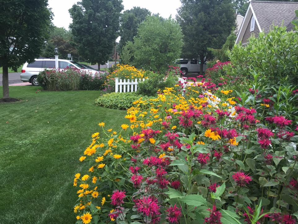 Residential homes and neighborhoods can benefit from the implementation of green infrastructure in more ways than many people realize. Planting native flower beds reduces runoff and attracts important pollinators.