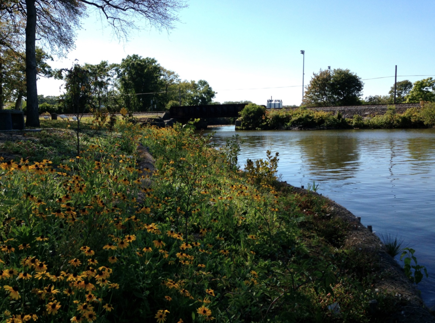 Restored shoreline at the Asbury Park Boat Launch in Deal Lake