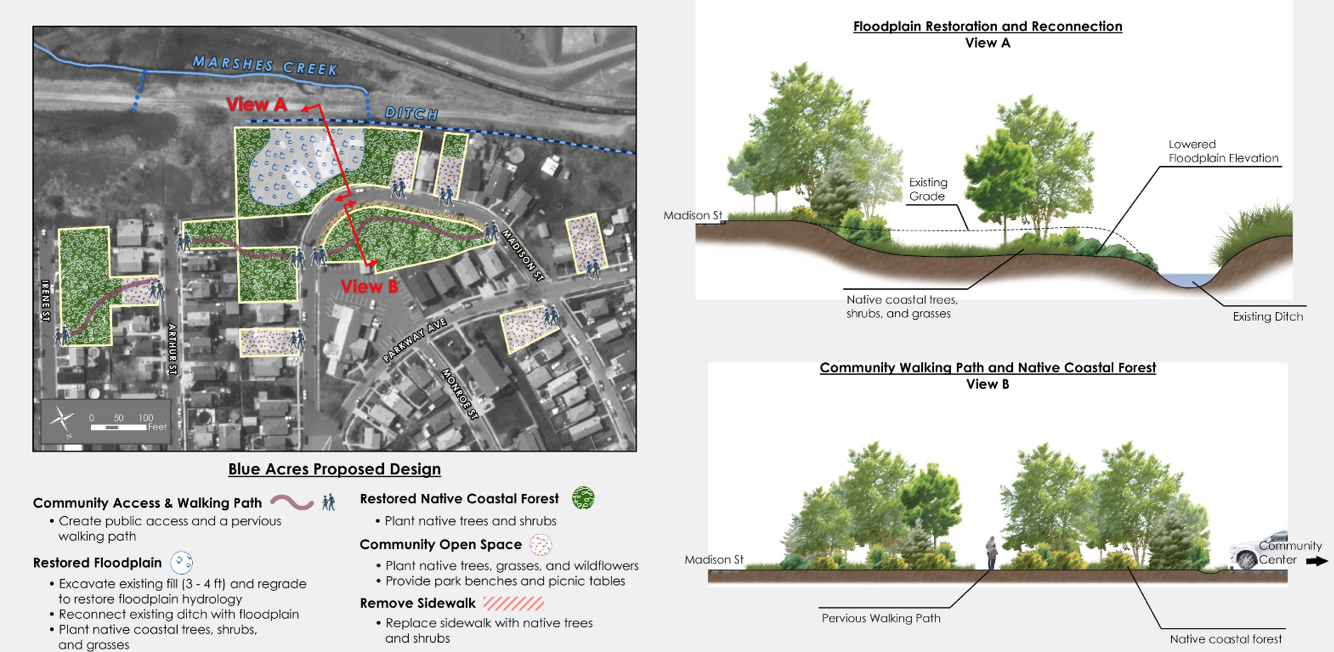 The City of Linden Blue Acres restoration project increases storm resiliency by reducing flooding and stormwater runoff by improving the ecological and floodplain function within the former residential properties acquired by the NJDEP Blue Acres Program.