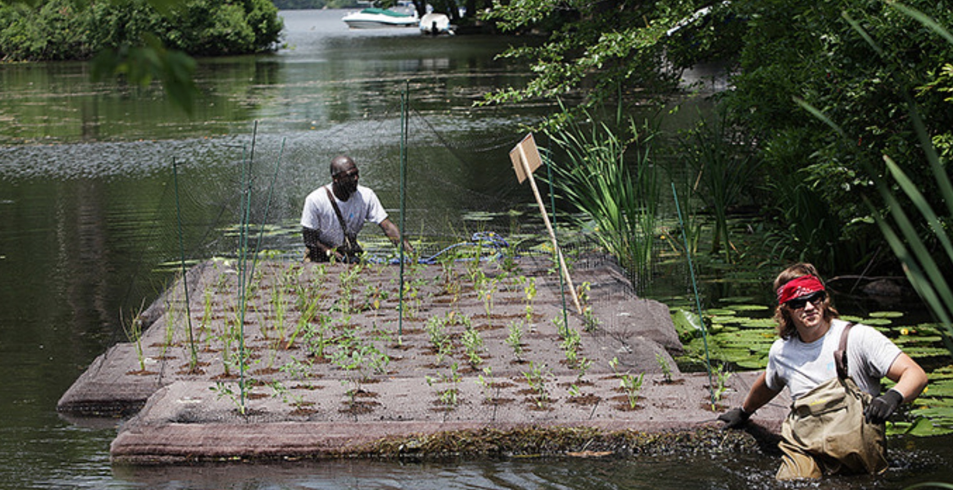 Casey Hurt, right, and Richard Ampomah maneuver one of two floating wetland islands in Ashley Cove.